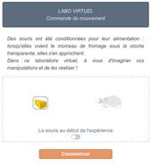 labo-virtuel-commande.png